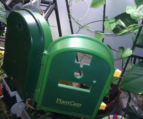 PlantCam setup by Gerris2