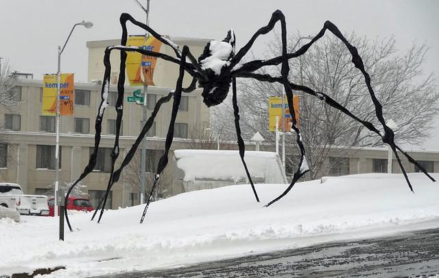 kemper-museum-spider
