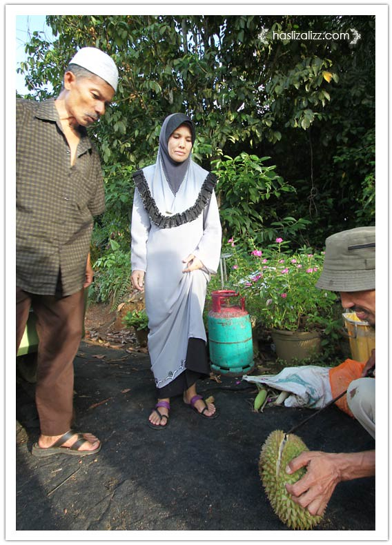 8617156072 6b94c73c59 b durian paling sedap