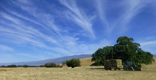 rural landscape hay tractors tarras