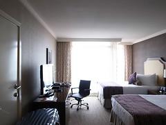 Room in PINNACLE HOTEL