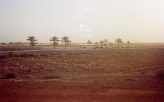 Road to Baghdad 3