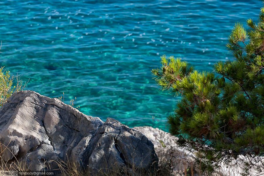 03-Wild-Makarska