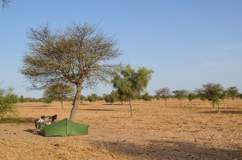 Savannah-camping in Senegal