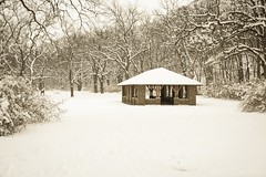 Elgin, Illinois - Tyler Creek Shelter