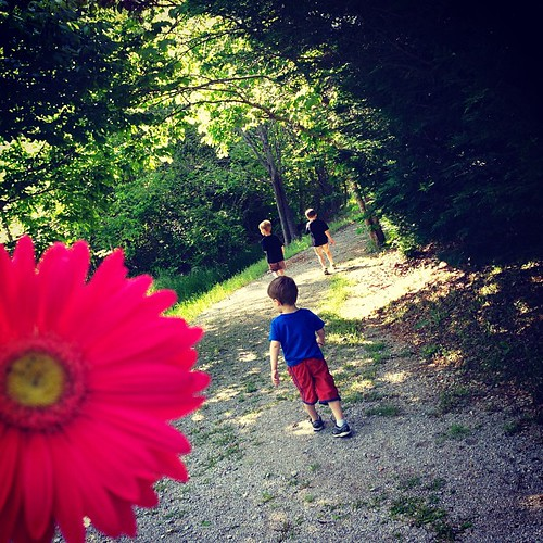 Our neighborhood trail on a warm afternoon. #EnjoyingTheSmallThings is easier when you know you will be missing them soon.