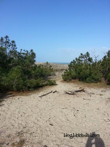 Pistas Ciclables Lacanau Ocean - Andernos