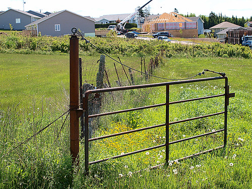 old canada field rural fence gate rusty nb explore forgotten weathered posts 1000views explored ©allrightsreserved may032013 nbphotosaintjohn