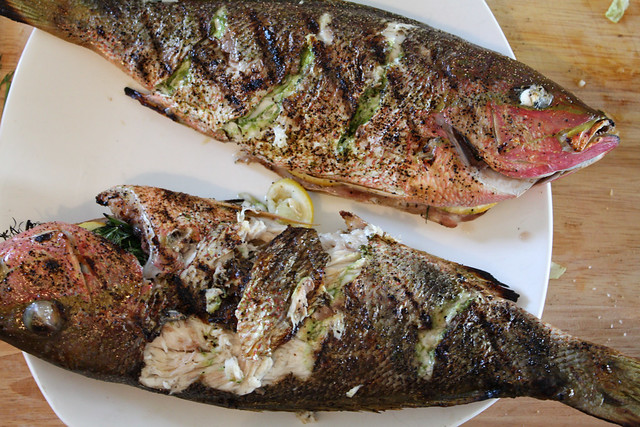 Grilled Red Snapper off grill