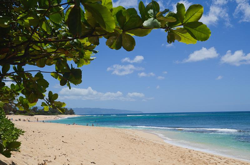 Oahu-Blog-9