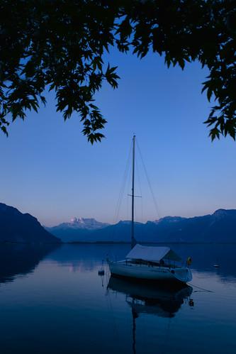 blue mountain bird water sunrise switzerland lac boardwalk