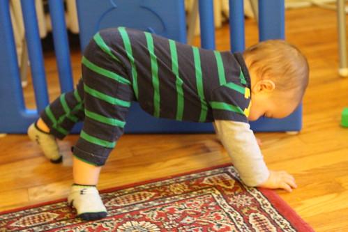 Elliott Crawling