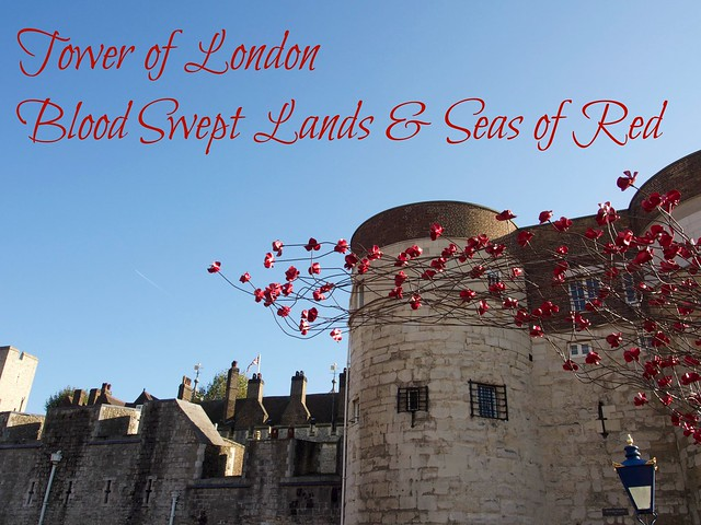 Tower of London, Blood Swept Lands and Seas of Red, London, travel, England, ceramic, poppies