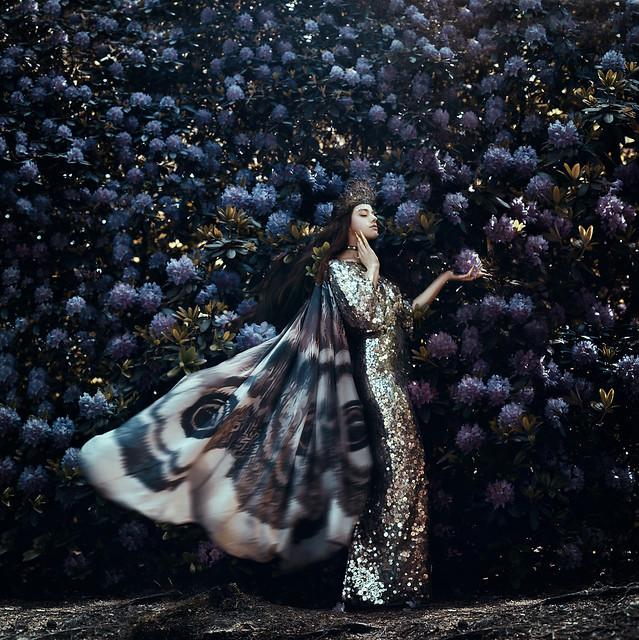 .bella. - A dream within a dream...