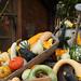 Herbstzeit - Kürbiszeit by ingrid eulenfan