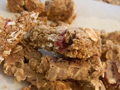 Homemade Fibre Bars