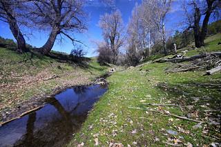 Arroyo Bodurria