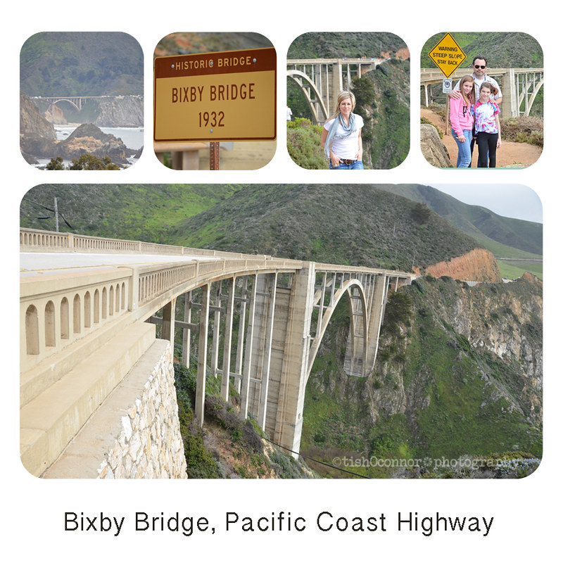 pch collage -2