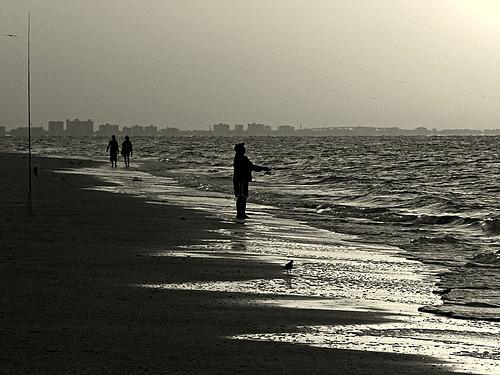 skyline seashells sunrise island fisherman florida fl sanibelisland gulfcoast fortmyers