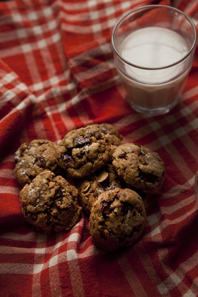 seasaltcookies7