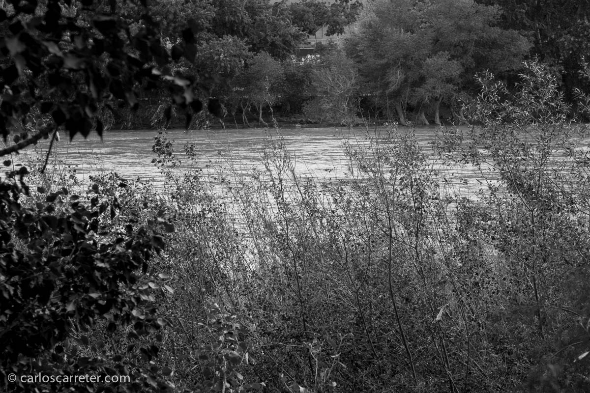 Sobre las riberas del Ebro