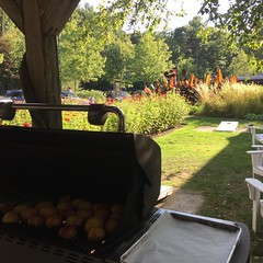 My post for a few minutes, grilling avocados and peaches for a salad! #cookingschool #stonewallkitchen #maine