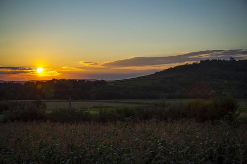 summer horizon hill tarcal tokaj cornfield
