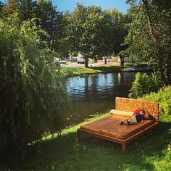 A little rest on the Golden Bed #afternoon #naptime #sunnydays #volkenkunde #pokestop