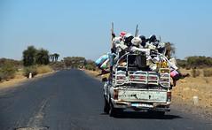 Mogolo (Eritrea) - Market Day