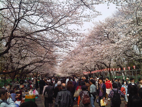 Ueno Park 上野恩賜公園