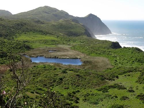 pond view trail pointreyesnationalseashore