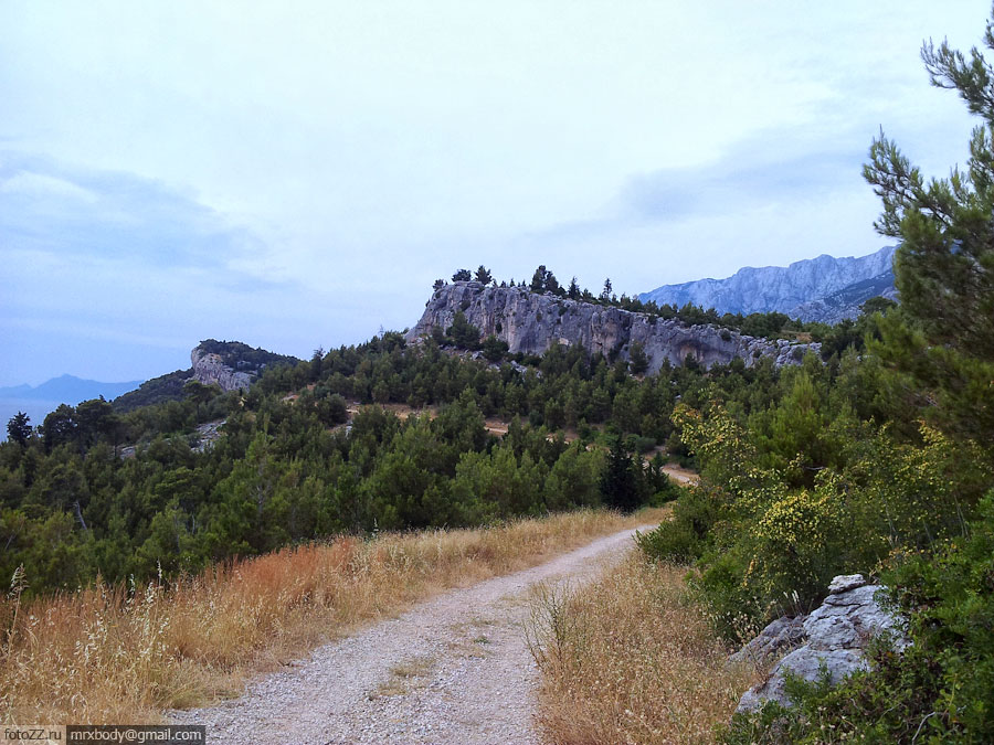 01-Wild-Makarska