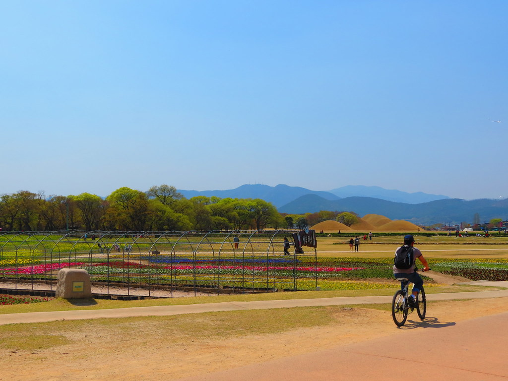 Korean Bike Trail