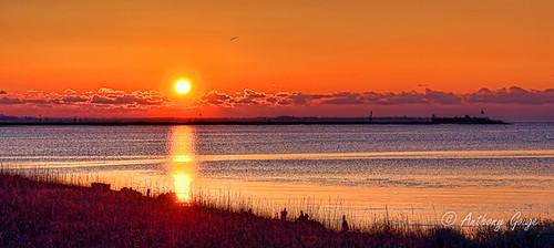 sc water sunrise dawn nikon warm waterfront south southcarolina charleston adobe nik hdr topaz lightroom photomatixpro adobelightroom colorefexpro topazlabs topazadjust topazdenoise d5100 topazdetail