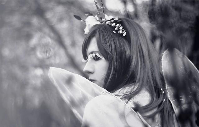 Sakura_f (10)