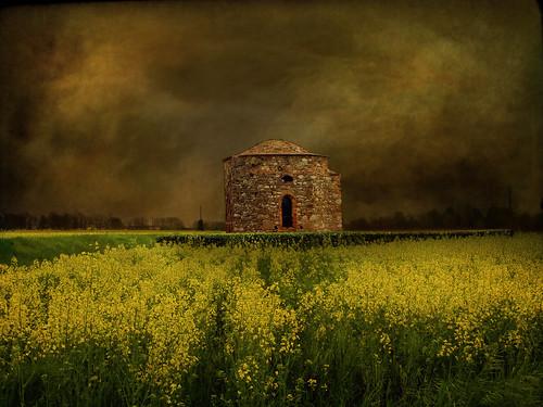 italy field landscape countryside spring italia country chapel friuli rapeseed colza martignacco