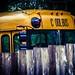 Cool Bus by David Ensor