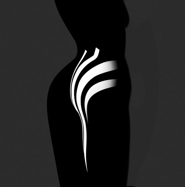Francis Giacobetti Zebras 09