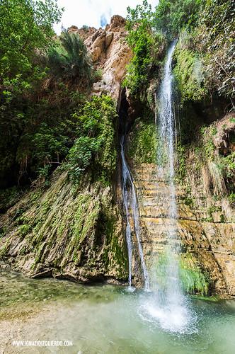 Israel - Ein Gedi Natural Park 02