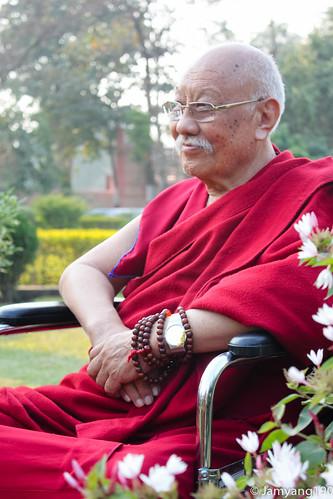 Luding Khenchen Rinpoche at Bodhgaya 祿頂堪仟仁波切在菩提迦耶