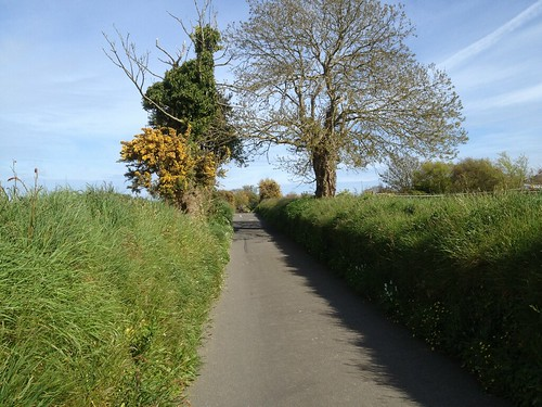 Guernsey lanes
