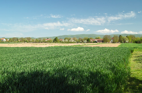 countryside sigma hills fields slavonia hrvatska selo slavonija dp2 staro petrovo