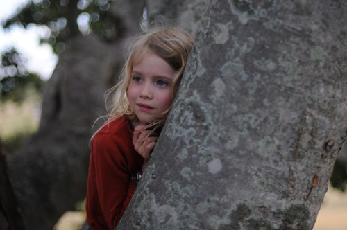webdice_『パパの木』サブ3