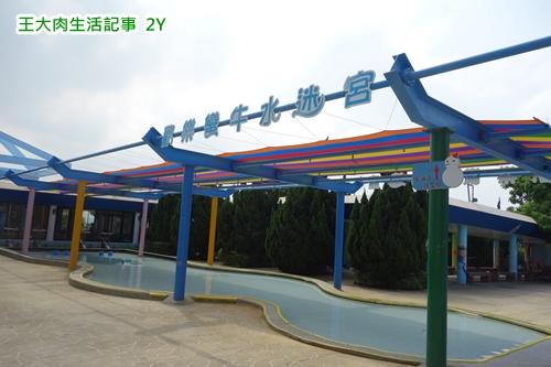 DSC08318