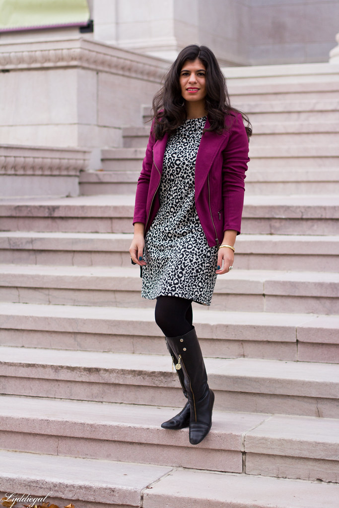 leopard dress, purple moto jacket, black boots-1.jpg