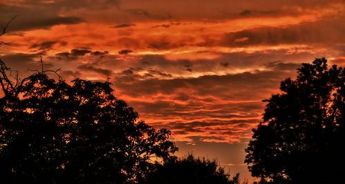 ciel sky rouge red coucherdesoleil atardecer sunset soir evening arbres trees août2016