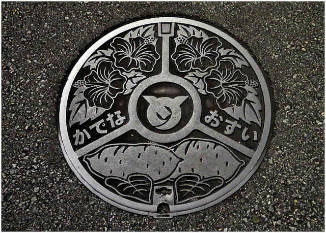 CAST IRON HIBISCUS AND A COUPLE OF SWEET POTATOS -- ANOTHER MANHOLE COVER UNDER A STREET LIGHT