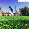 #Repost @espacoducao ・・・ Leandro em seu treino com a Apple :heart_eyes:. #dogagility #agilitylifestyle #ducaoagility #espacoducao