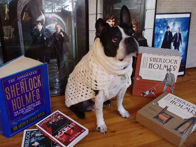 Virginia in her John Watson oatmeal jumper, a la Sherlock