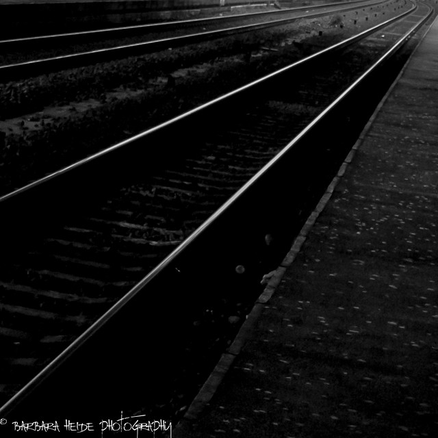 The Flickr Lounge: Monthly Theme Wednesday - Walkway
